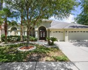 8357 Golden Prairie Drive, Tampa image