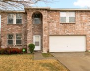 1320 Willow Tree Drive, McKinney image