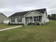 200 Pepperberry Ct., Conway image