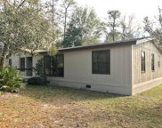 32316 Chipola Trail, Sorrento image