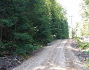 Aunt Mary Brook Road, Candia image