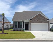 229 Heron Lake Ct., Murrells Inlet image