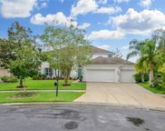 26834 Shoregrass Drive, Wesley Chapel image