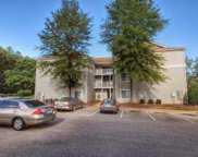 1341 Crab Orchard Drive Unit #203, Raleigh image