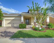 5812 Great Lawn Place, Lithia image