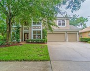 18117 Regents Square Drive, Tampa image