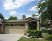 11118 Pinewood Cove Lane, Orlando image