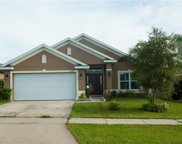 31087 Water Lily Drive, Brooksville image