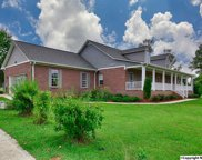 6980 Old Railroad Bed Road, Toney image