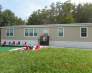 13801 Green Meadow  Road, Fort Myers image