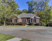1120 Pet Sites Rd., Chapin image