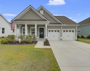113 Calm Water Way, Summerville image