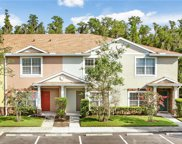 30318 Elderwood Drive, Wesley Chapel image