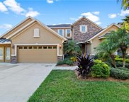 19238 Climbing Aster Drive, Tampa image