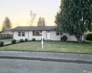 6851 Dutch Haven Dr, Lynden image