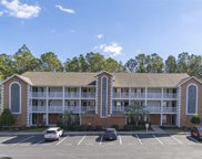 4834 Innisbrook Ct. Unit 1107, Myrtle Beach image
