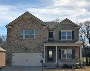 1402 Marigold Drive, Spring Hill image