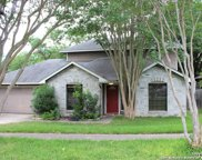 11501 Forest Hollow, Live Oak image