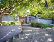 397 James Bowie Ct, Alamo image