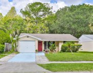 16128 Manorwood Circle, Tampa image