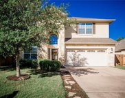 7909 Wisteria Valley Dr, Austin image