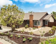 2911 Pine Grove Ct, Spring Valley image