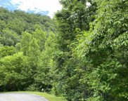 Lot 119 Long Rifle Rd, Sevierville image