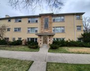 5738 West Higgins Avenue Unit 1S, Chicago image