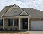 2087 Sunflower Drive 445, Spring Hill image