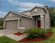 12705 Geneva Glade Drive, Riverview image