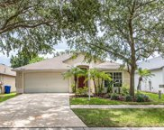 10120 Somersby Dr, Riverview image
