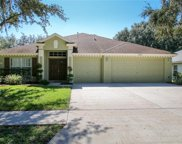 18245 Collridge Drive, Tampa image