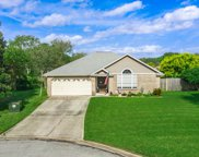 12324 CRYSTAL CREEK CT, Jacksonville image