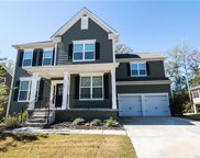 17112  Alydar Commons Lane, Charlotte image