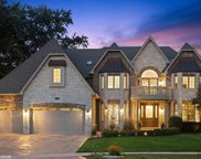 1730 Brian Grant Court, Downers Grove image