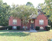 265 South Haven Cir, Odenville image