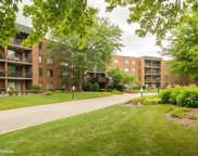 950 East Wilmette Road Unit 417, Palatine image