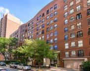 711 W Gordon Terrace Unit #321, Chicago image