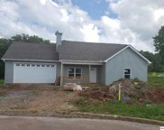 2248 Frewin Ct, Sevierville image