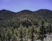 S:11t:4r:72-Tr, Evergreen image