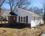 543 Odens Mill Rd, Sylacauga image