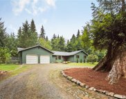 11006 Wagner Rd, Snohomish image