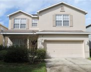 11207 Creek Haven Drive, Riverview image