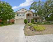 8922 Saxon Forest, Helotes image