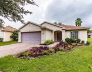 11335 Coconut Island Drive, Riverview image