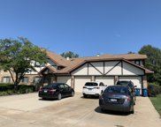 113 Walters Lane Unit #2A, Itasca image