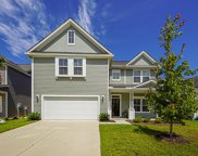 1141 Turkey Trot Drive, Johns Island image