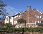 502 W Miner Street Unit #1B, Arlington Heights image