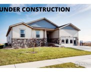 1728 Branching Canopy Dr, Windsor image