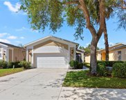 8631 Ibis Cove Cir, Naples image
